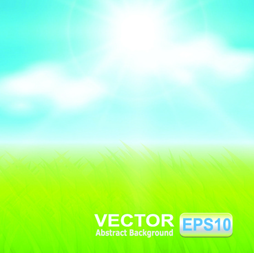 meadow with blue sky blurred background vector