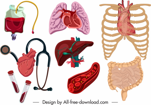 medical design elements viscera blood medical tools sketch