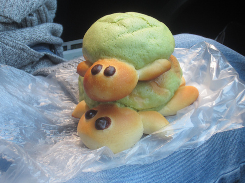 melon bread turtles