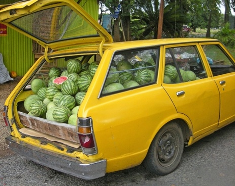 melon delivery