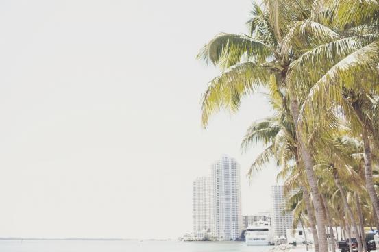 minimal summer coastline