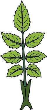 Mint Branch clip art
