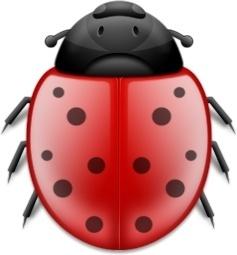 Misc Bug