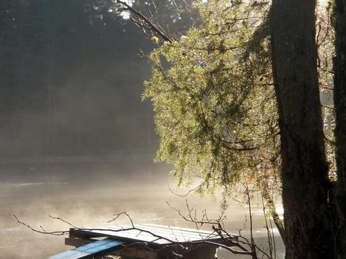 mist fog mysterious