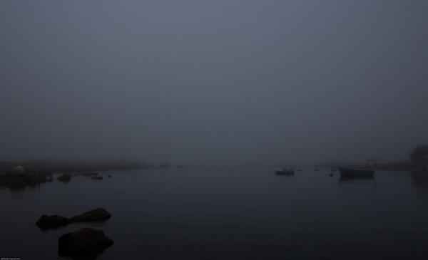 misty jacobsbay morning