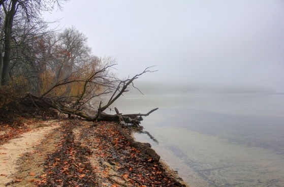 misty lakeshore in madison wisconsin