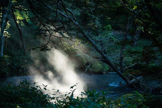 misty river yukawa