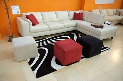 modern living room boutique picture 3