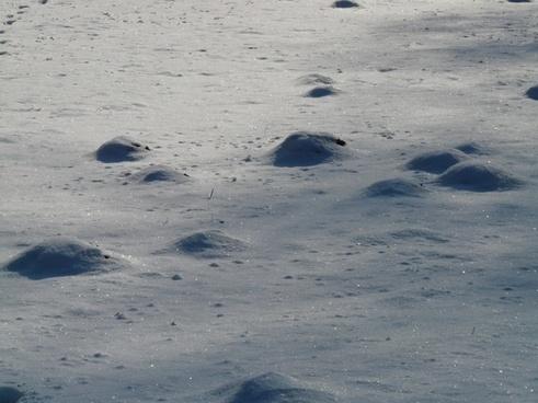 molehill wintry cold