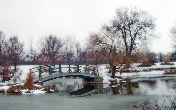 monet bridge in park in snow