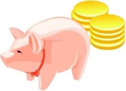 Money Pig 1