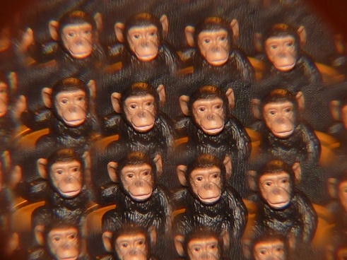 monkey kaleidoscope art