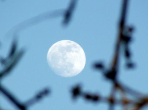 moon sky 2