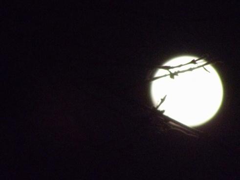 moon sky 4
