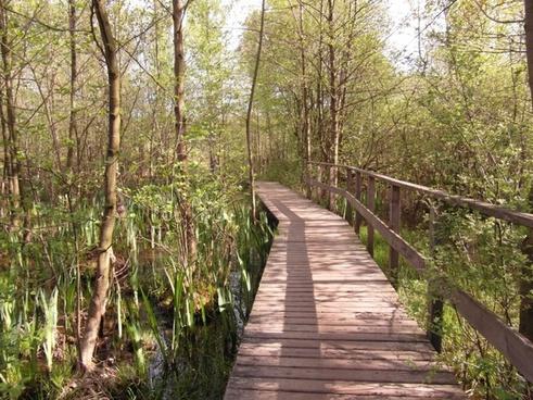 moor bridge web