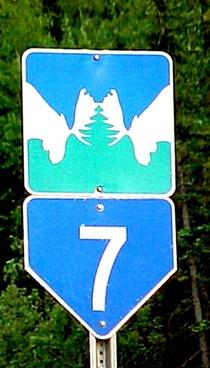 moose road sign yukon bc