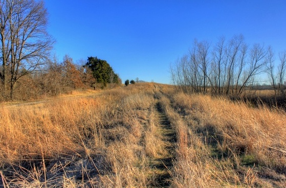 more hiking trail at weldon springs state natural area missouri