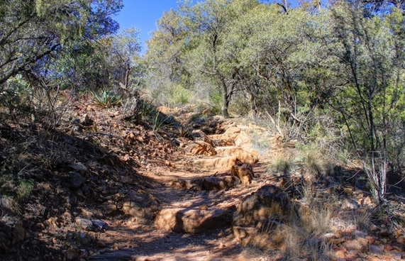 more trail steps at big bend national park texas