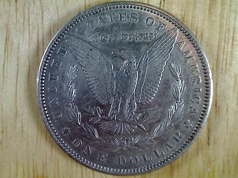 morgan dollar tail