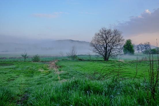morning light at the river regen