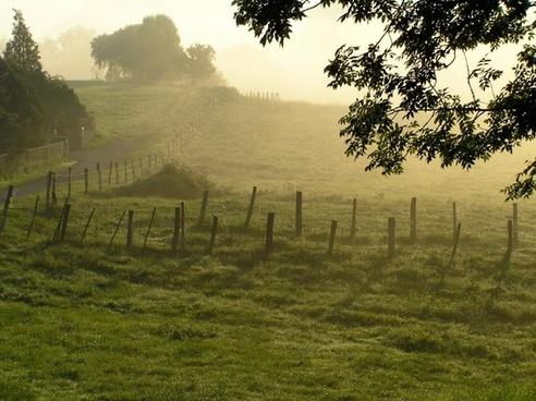 morning mist france landscape