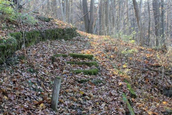 moss covered steps at bellevue state park iowa