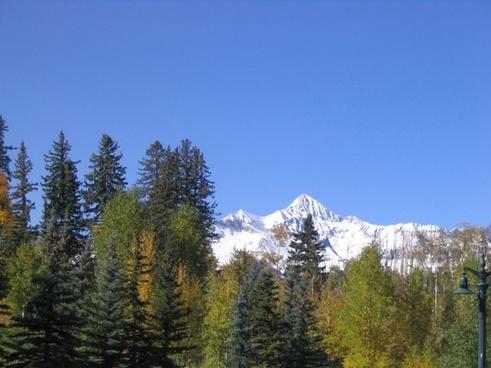 mountain mountain top trees