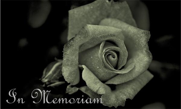 mourning death die