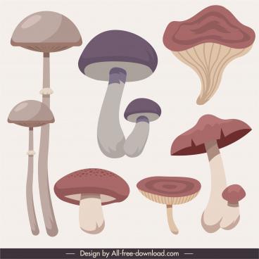 mushroom icons classical handdrawn sketch