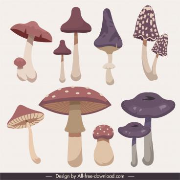 mushroom icons colored classic sketch