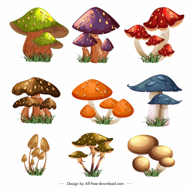 mushroom icons colorful modern sketch
