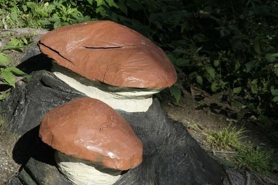 mushrooms art dummy