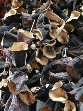 mushrooms dried judas ears