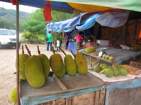 nanka jackfruit