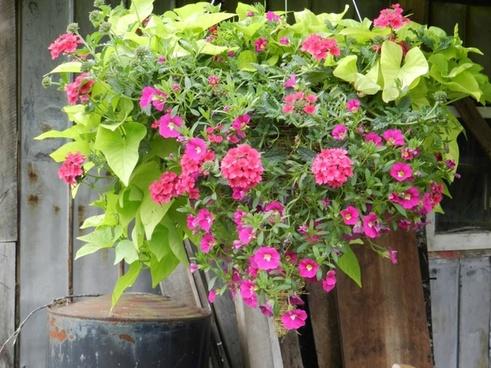 nathalie bouquet