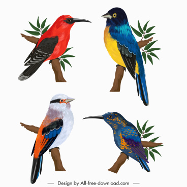 natural bird icons colorful design perching gesture sketch