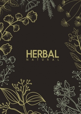 natural herb background dark design various plants decor
