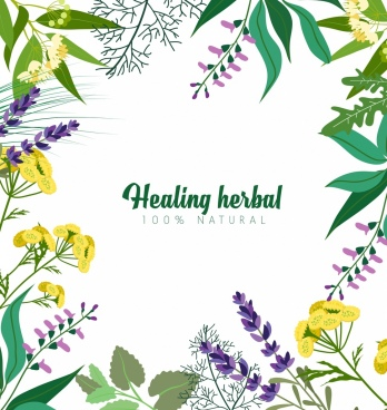 natural herbs advertising colorful plant icons decoration