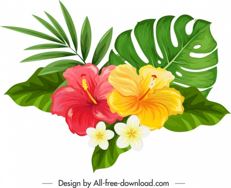 natural hibiscus plumeria flowers icon multicolored sketch