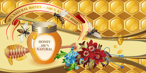 natural honey creative poster vecor