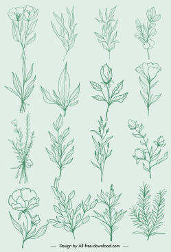 natural plants icons classic handdrawn botany leaf sketch
