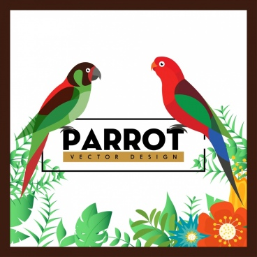 nature background colorful parrots flowers decoration