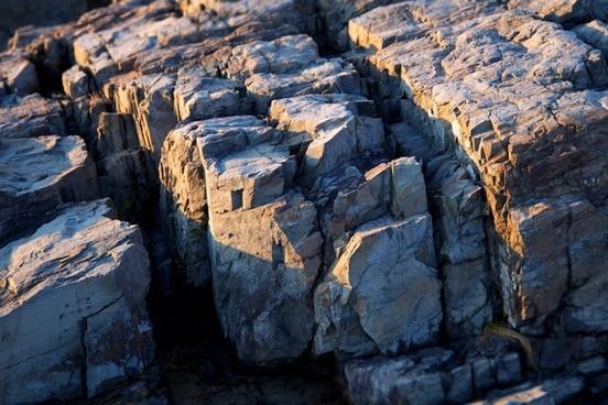 nature beach ocean rocks seacoast sunlight