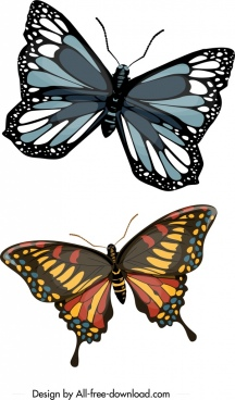 nature butterfly icons dark colorful modern design