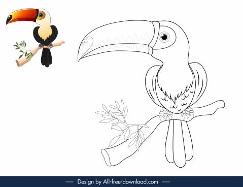 nature coloring book elements toucan sketch