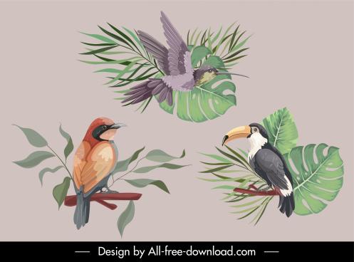 nature design elements birds creatures sketch classical handdrawn
