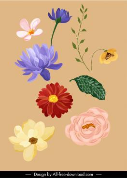 nature design elements colored classic petals leaf sketch