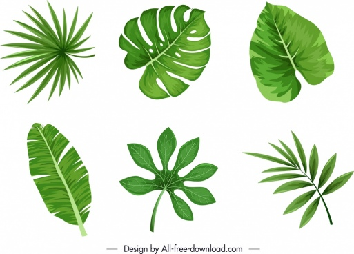 nature design elements flat green leaf shapes sketch