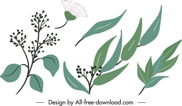nature design elements flower leaves sketch classic design