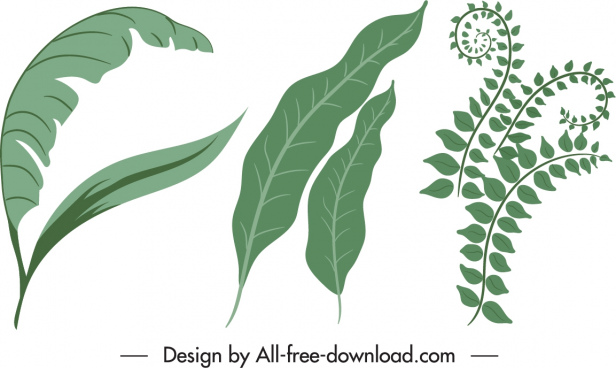 nature design elements green leaf sketch